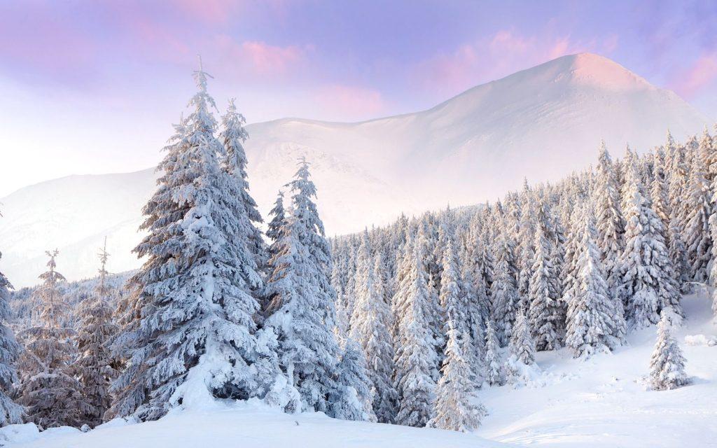 Снег, лед и иней