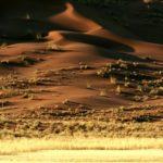 Обои пустыня