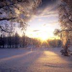 Обои зима