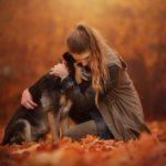 Осенние собачки Энн Гайер